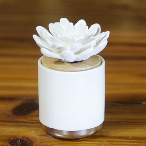 Luxury Ceramic Reed Diffuser Bottle with Cheap Price
