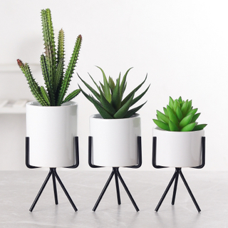 Marble Garden Ceramic Desktop Planter Succulent Plant Pot with Iron Metal Round Stand Holder