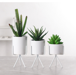 Promotional Wholesale White Cylinder Home Decor Ornaments Mini Ceramic Succulent Plant Pots with Metal Stands