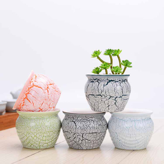 High Temperature Burst Multi-meat Flowerpot Manufacturers Simple Creative Ceramic Tabletop Potted