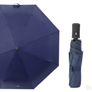 China Cheap Best Price Stock Folded Compact Promotional Rain Wholesale Umbrella for Sale Online